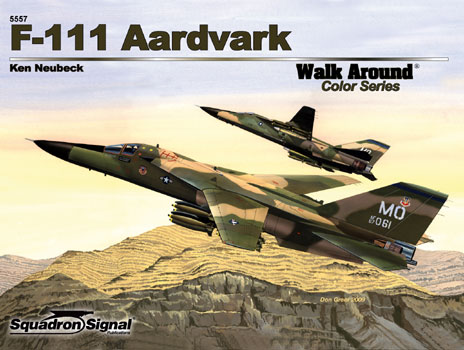 F-111 AARDVARK COLOR WALK AROUND